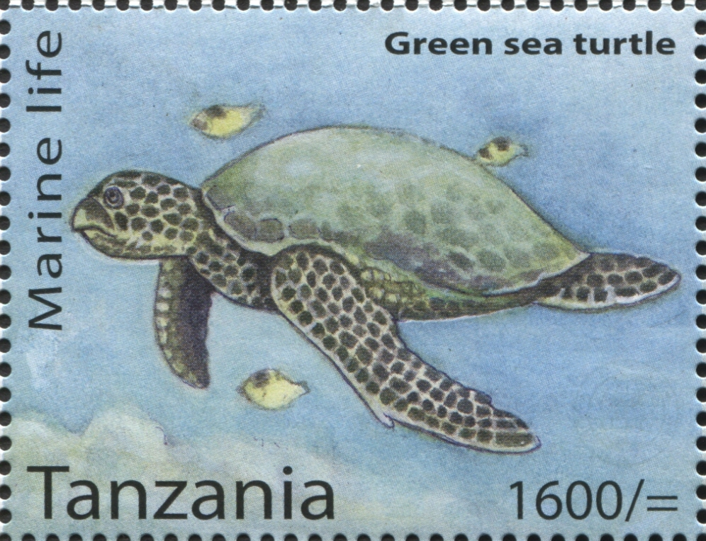 Marine Life - Green Sea Turtle - Philately Tanzania stamps