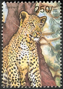 Big five - Leopard - Philately Tanzania stamps
