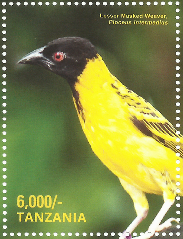 Lesser Masked - Philately Tanzania stamps