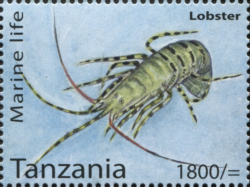 Marine Life - Lobster - Philately Tanzania stamps