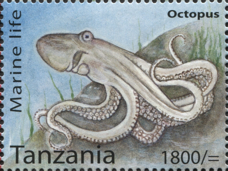 Marine Life - Octopus - Philately Tanzania stamps