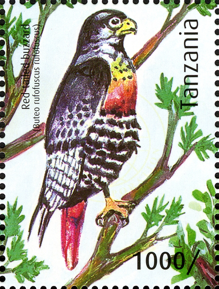 Red-tailed Buzzard - Philately Tanzania stamps
