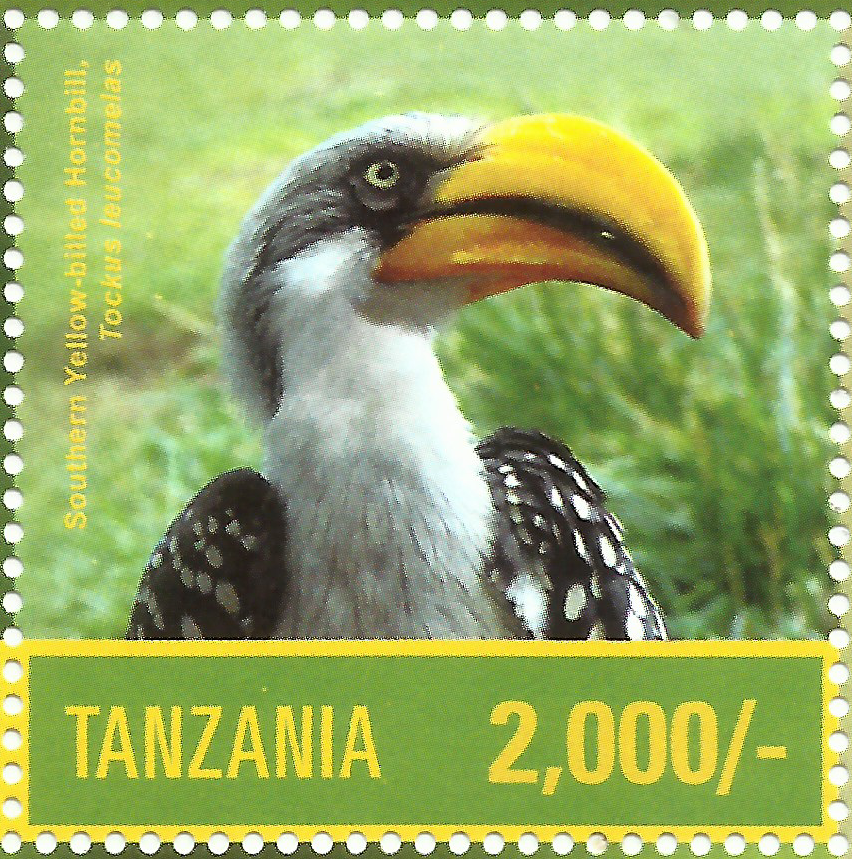 Southern Yellow BilledHornbill - Philately Tanzania stamps