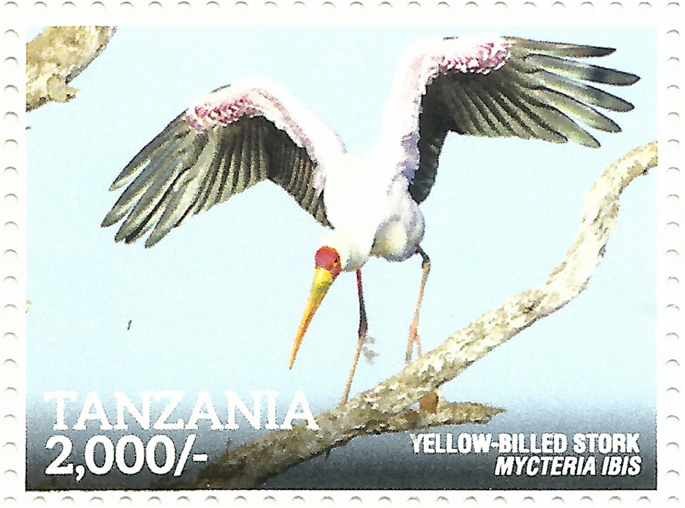 Yellow- Billed Stork - Philately Tanzania stamps