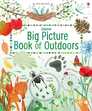 The Big Picture Book of Outdoors