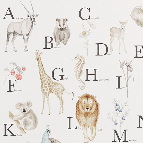 Alphabet Poster - French
