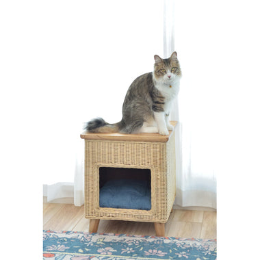 Room Essence PET Stool - Wood Top