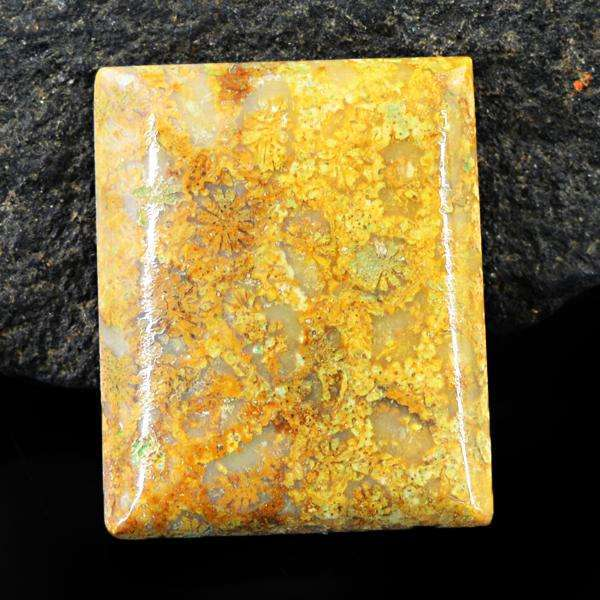 gemsmore:Amazing Coral Fossil Untreated Loose Gemstone