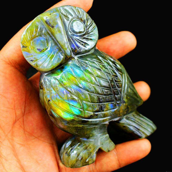 gemsmore:Amazing Flash Labardorite Artisian Hand Carved Owl