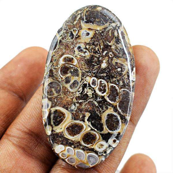 gemsmore:Amazing Genuine Turritella Agate Oval Shape Untreated Loose Gemstone