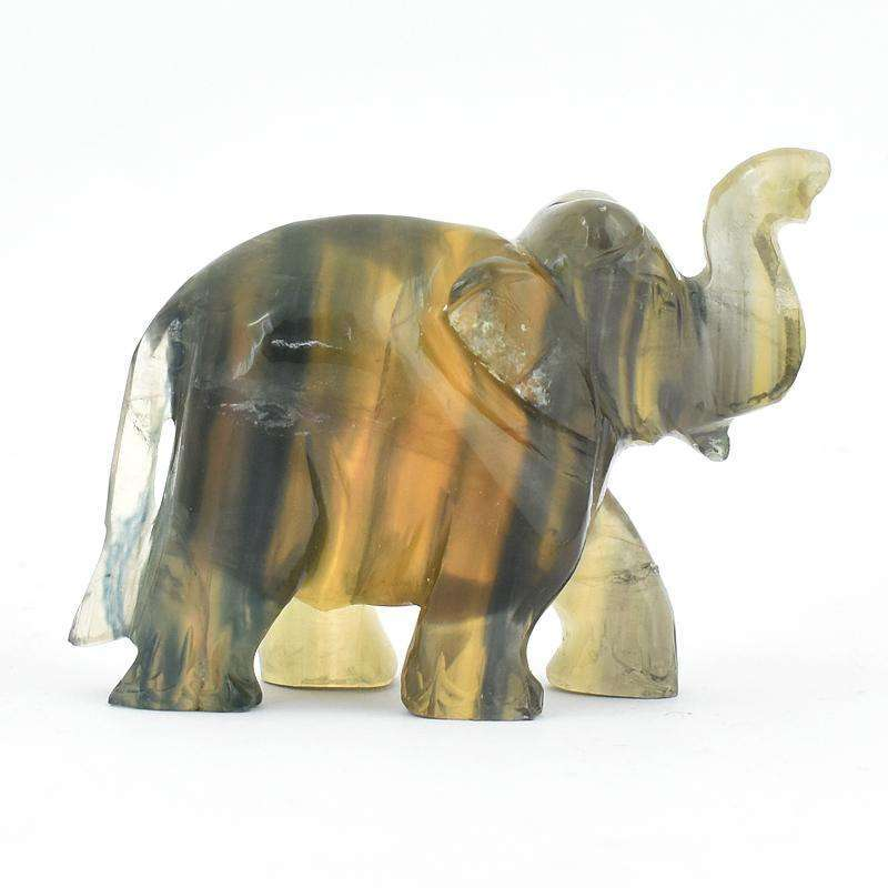 gemsmore:Amazing Multicolor Fluorite Hand Carved Elephant