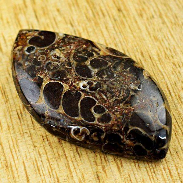 gemsmore:Amazing Natural Turritella Agate Untreated Loose Gemstone