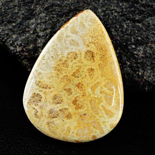 gemsmore:Genuine Amazing Coral Fossil Pear Shape Untreated Loose Gemstone