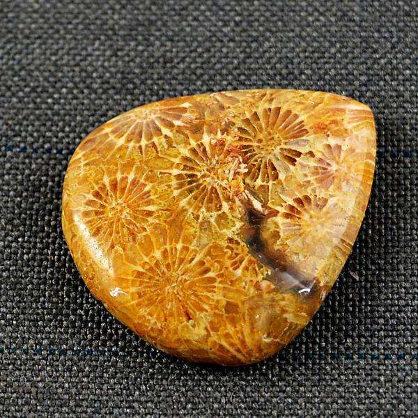 gemsmore:Genuine Coral Fossil Pear Shape Loose Gemstone
