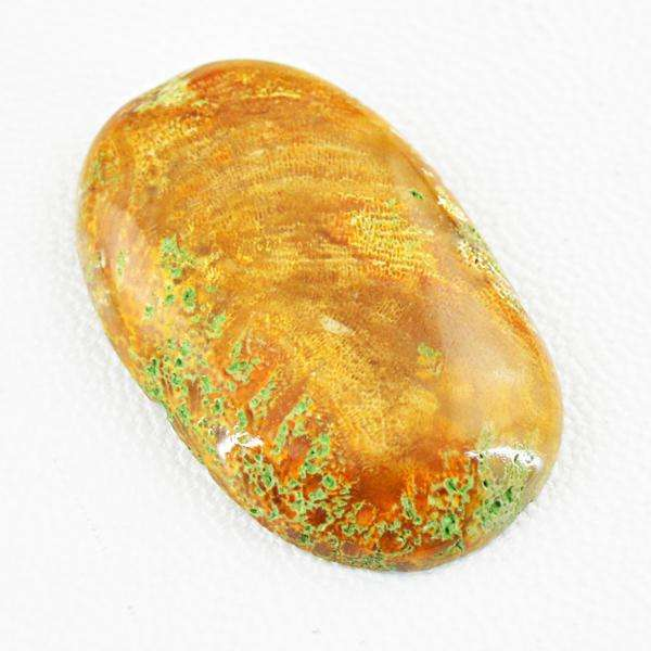 gemsmore:Natural Coral Fossil Oval Shape Untreated Loose Gemstone