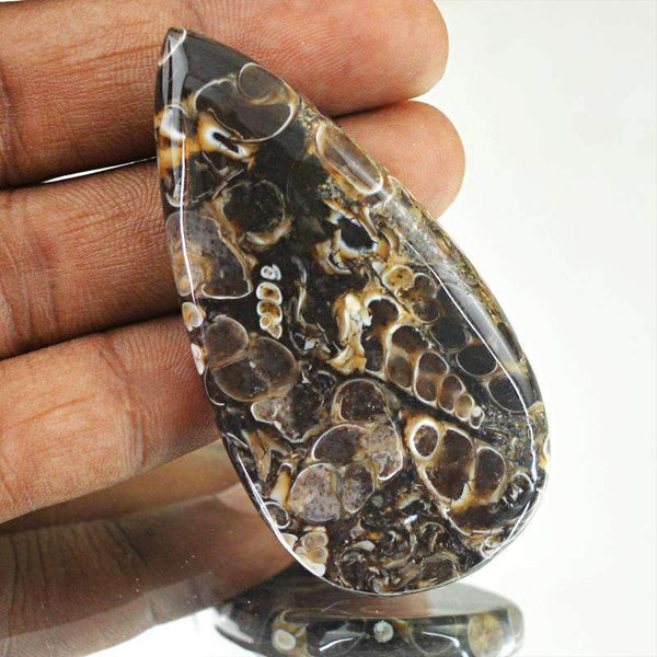 gemsmore:Natural Untreated Crinoid Fossil Gemstone - Pear Shape