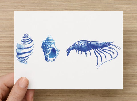 Shells and Prawn Postcard