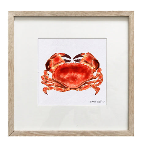 Red Crab Framed Print