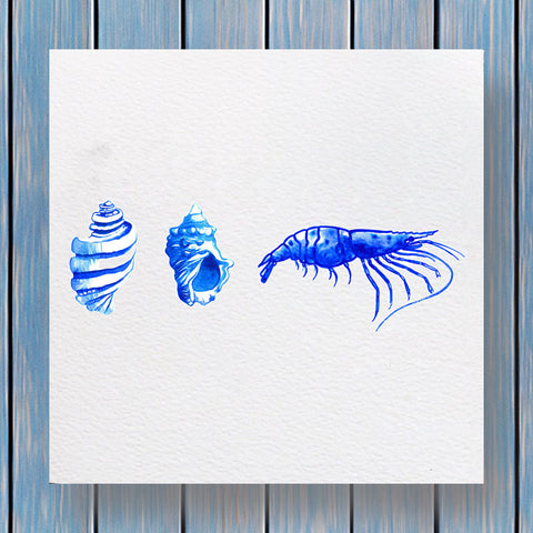 Two Shells And Prawn - Fells Collection Greeting Card
