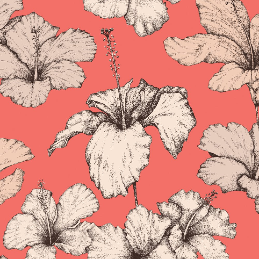 Hibiscus: Wallpaper - Hot Coral