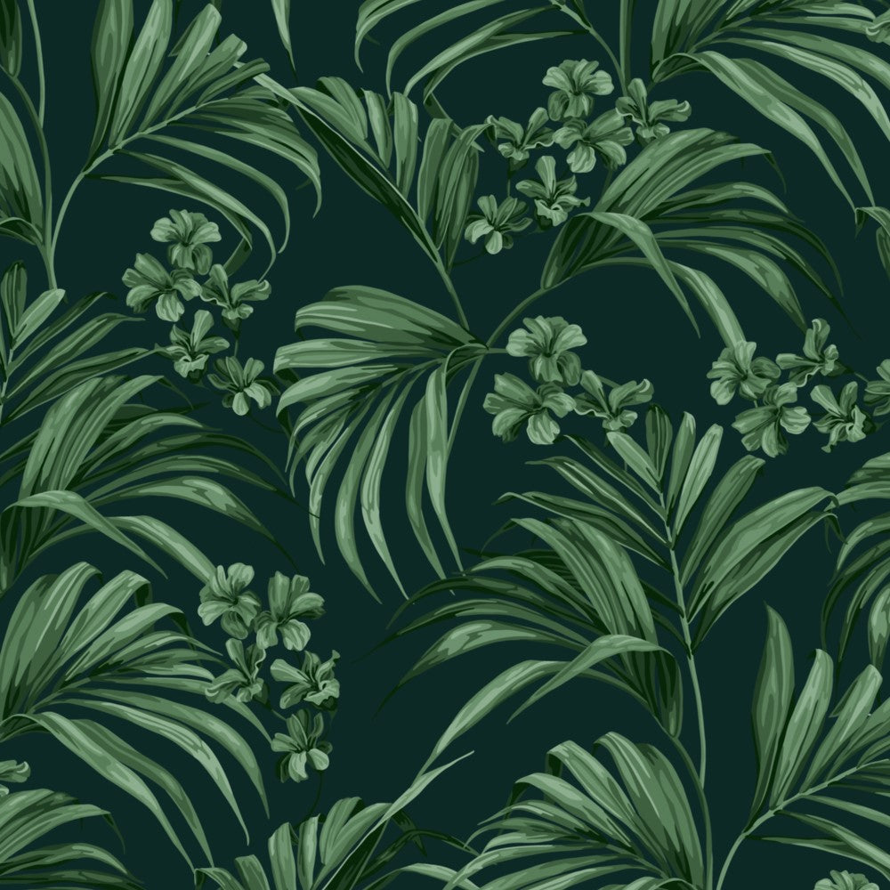 Kentia: Cotton - Dark Green