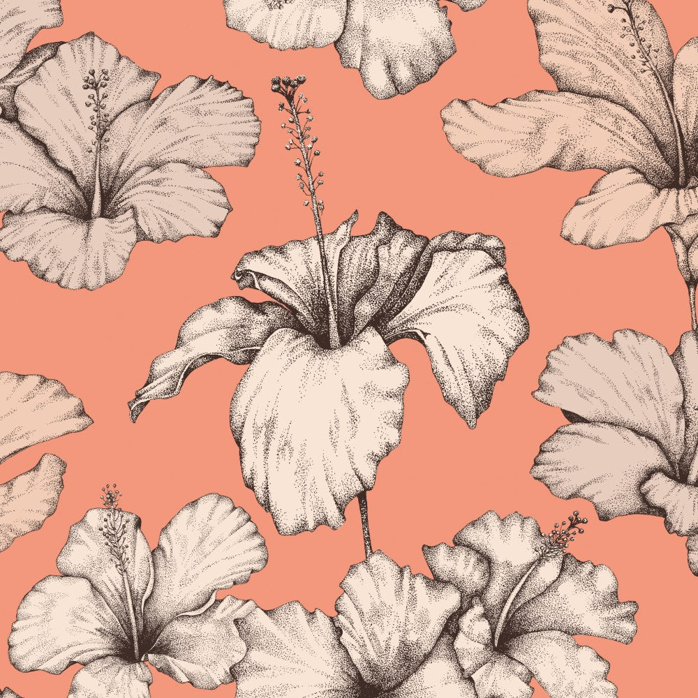 Hibiscus: Wallpaper - Peach
