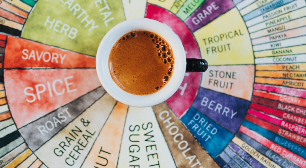 Cupping - SCA Flavor Wheel