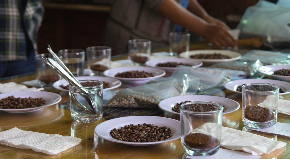 Kaffeekultur Kaffeetrends Cupping in Asien