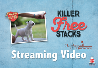 DEMAND TO WIN PUPPIES: KILLER FREE STACK (Video On Demand)