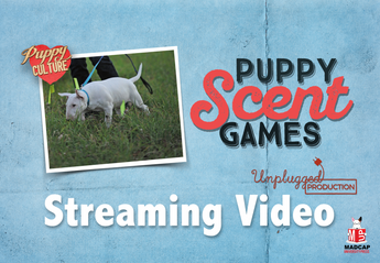 DEMAND TO WIN PUPPIES: PUPPY SCENT GAMES (Video On Demand)