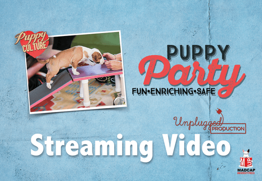 DEMAND TO WIN PUPPIES: PUPPY PARTY (Video On Demand)