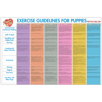 AGE APPROPRIATE EXERCISE POSTER