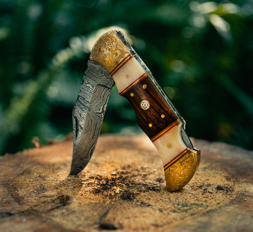Walnut Wood And Bone Pocket Knife VG53