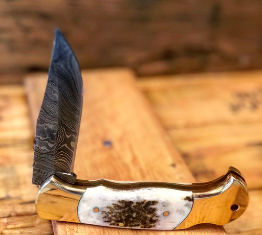 Deer Stag Pocket Knife- VG 32