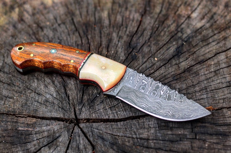Walnut Fixed Blade- VG22