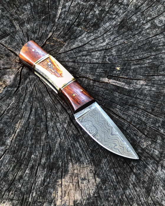 Fixed Blade Stag And Wood Knife