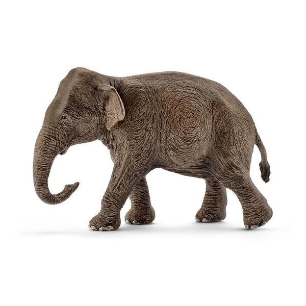 Schleich Asian Elephant Female (14753) | Bumble Tree