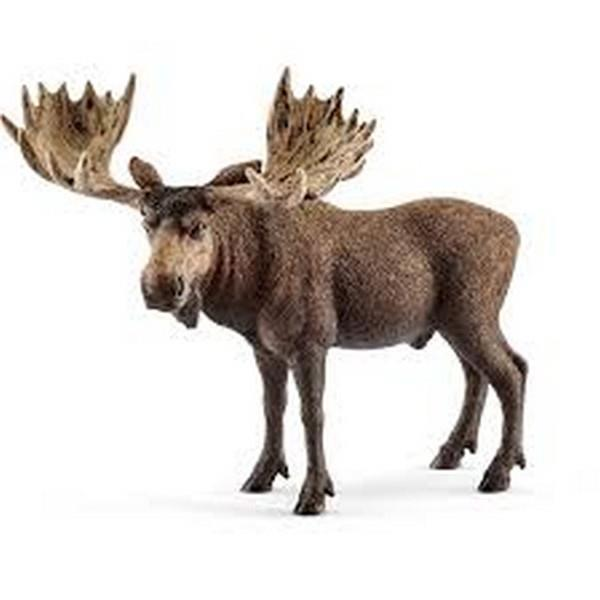 Schleich Moose Bull (14781) | Bumble Tree