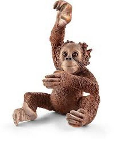 Schleich Young Orangutan (14776) | Bumble Tree