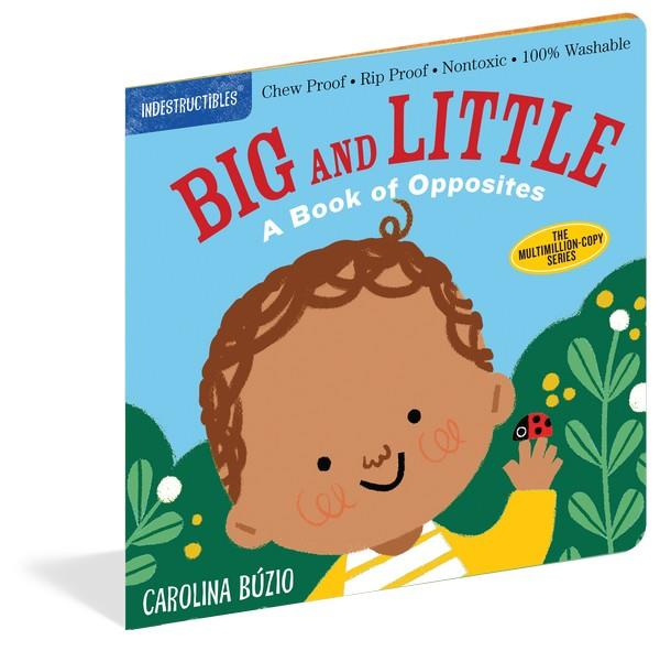 Indestructibles Book Big and Little | Bumble Tree