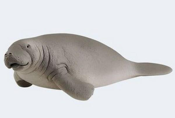 Schleich Manatee (14839) | Bumble Tree