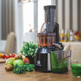 Ventray 808 Masticating Juicer