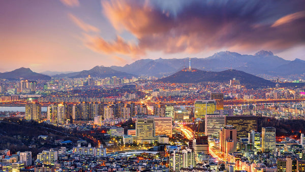 Seoul Style – Natural Harmony in a Modern Setting