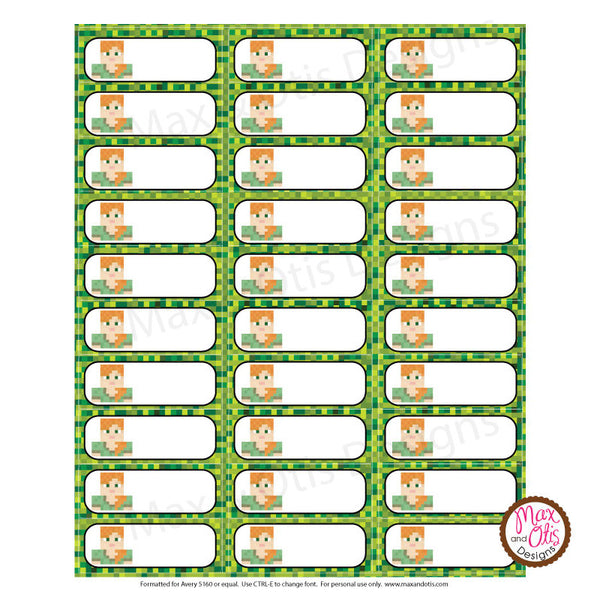 picture about Minecraft Labels Printable named Printable Protect Labels - Minecraft Alex Max Otis Programs