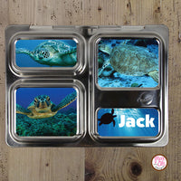 PlanetBox Launch Personalized Magnets - Sea Turtles - Max & Otis Designs