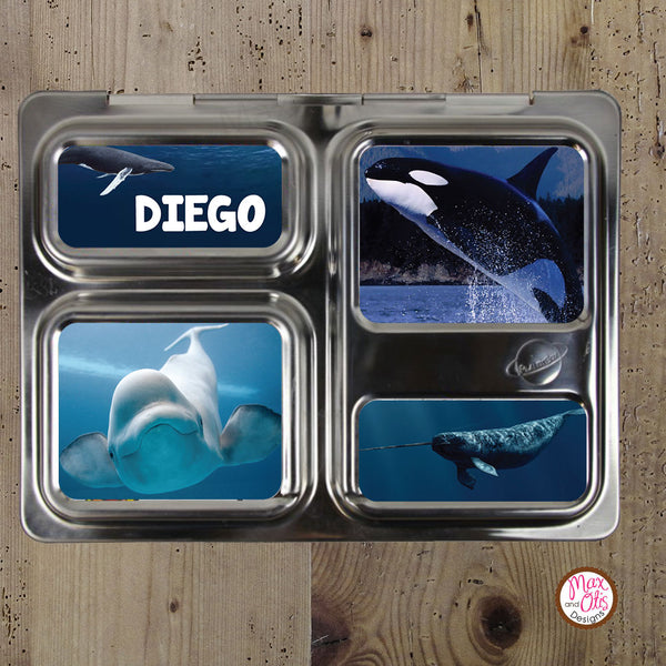 PlanetBox Launch Personalized Magnets - Whales - Max & Otis Designs