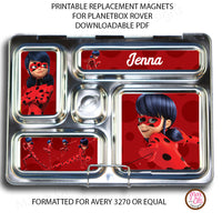 PlanetBox Rover Personalized Magnets -Miraculous Ladybug - Max & Otis Designs