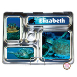 PlanetBox Rover Personalized Magnets - Sea Turtles - Max & Otis Designs
