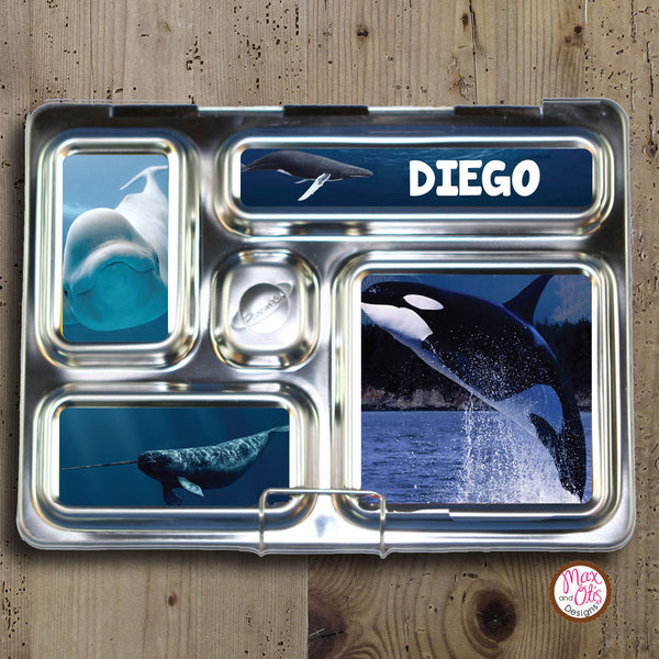 PlanetBox Rover Personalized Magnets - Whales - Max & Otis Designs