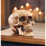 Grinning Skull - Distinctive Merchandise